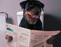 Happy Pooping !! -Solveda Campain ad