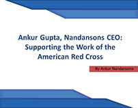 Ankur Gupta, Nandansons CEO Supporting the Work of the