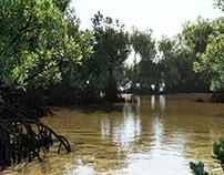 Mangrove scene