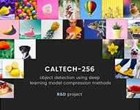 Caltech-256