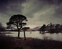 PHOTOGRAPHY | WEST HIGHLANDS