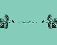 Parabellum — Fanzine