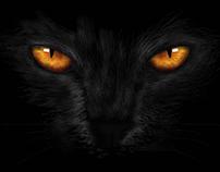 Chat Noir - Ilustración