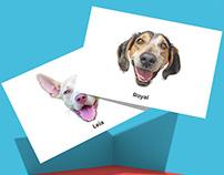 Badass Animal Rescue - Anniversary Cards