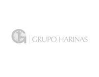 GRUPO HARINAS