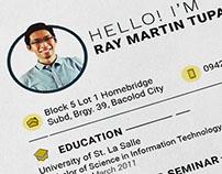 Curriculum Vitae 2017