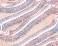 Blood, Vessels, Tissue: Abstract Medical Illustrations
