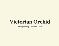 Victorian Orchid