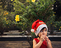 Cara Little Christmas Project