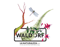 Programa visual Waldorf (sistema dinámico)