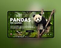 """""""Pandas"""" diseño de interfaz e inspiración"""