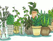 Plant Zine