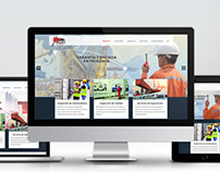 NETSALESA Website