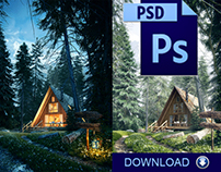 PSD FILES - Lost in the Forest