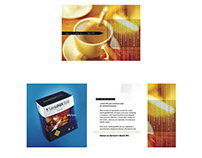 Saleslogix Direct Mail (stair-step) Brochure