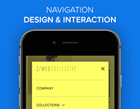 Navigation Design & Interaction