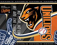 2017 Unilions brand identity design