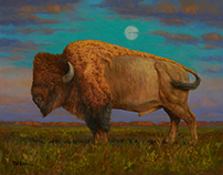 BUFFALO MOON - oil paint