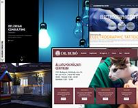 Websites 2015 Q3&Q4