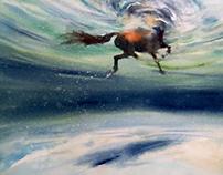 Wet Horses