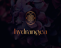 Hydrangea - flower and chocolate
