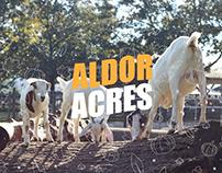 Aldor Acres Brand Identity
