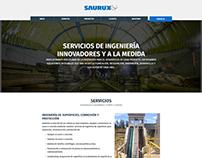 Saurux.co // Estrategia Digital