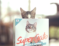 Think about the box - Super Gato (Award Winner)