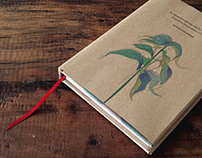 "LIBRO ""El secreto de las siete semillas"""