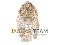 """Jaguar Team"" web agency"