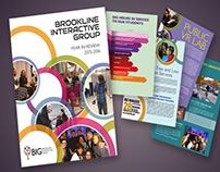 Brookline Interactive Group Year in Review