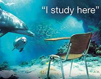 QA // I STUDY HERE