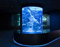 Aquarium Donostia-San Sebastián