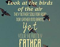 Birds - Matthew 6:26