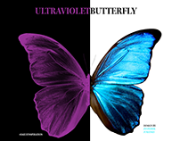 Butterfly - Slider effect Adobe XD
