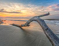Coast of Hilton Head