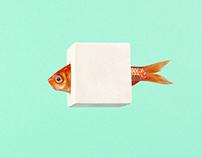 Photograph 'Fish plaster'