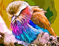 Bird of prey, I am not