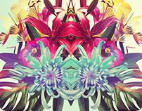 Bouquet de Fleurs / Azzur