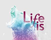 Vans - Life Is____