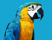 Parrot Triangle Illustration - Ara Ararauna
