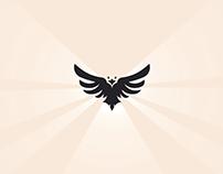 Raven 2d Logo Intro