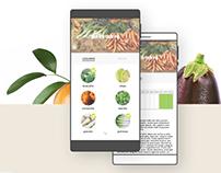 App - Fruits & légumes de saison