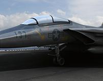 F-14 Jet
