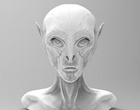 zBrush Alien