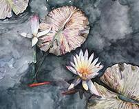 Botanical Garden Memory