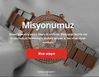 Essagrup Corporate Responsive Website Project