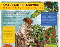 The Colombian Coffee Hub