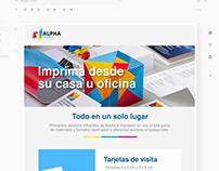 Newsletter design. Print Shop. Gerardo Molina.
