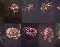 Rose Collage